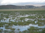 UpperKiniraWetlands